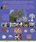 Folder da Exposição Arte com Sementes e Miçangas