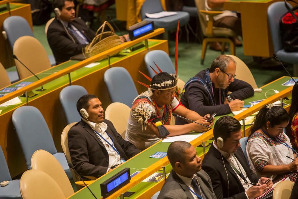 Iepé obtém status consultivo especial na ONU